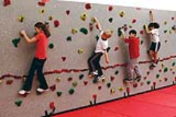 Everlast 20' Traverse Wall Package