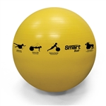 Prism Fitness Group Smart Stability Ball